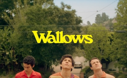 Wallows 2